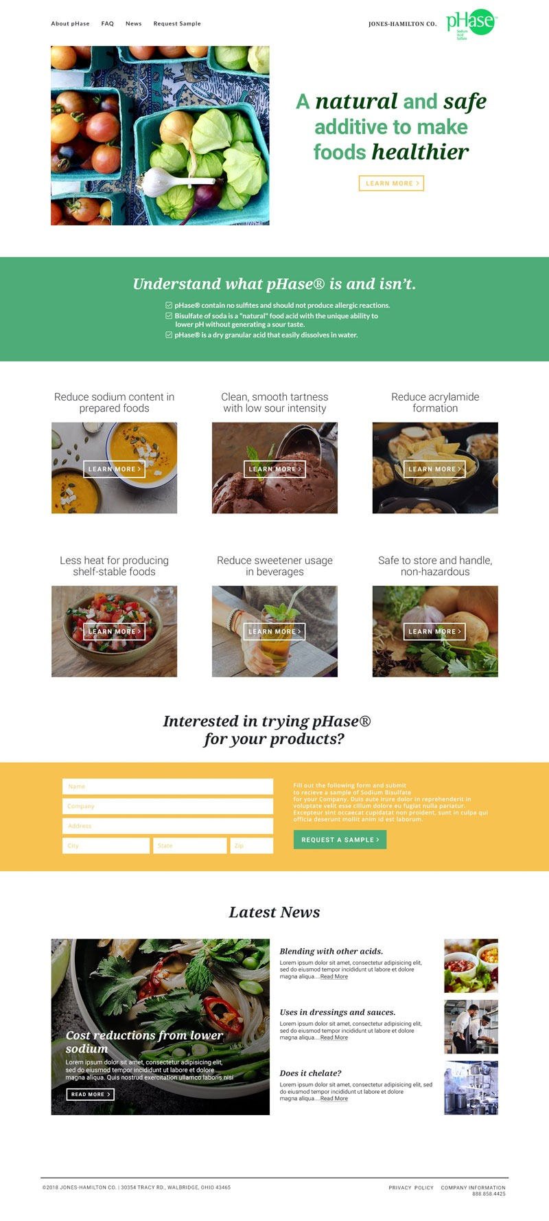 Mockup for informational B2B food additive website.